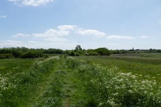 Woodham Fen Seawall