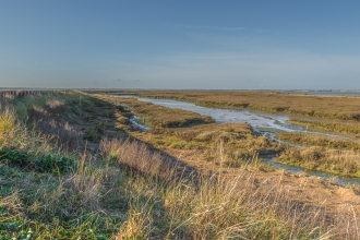 Naze Channel