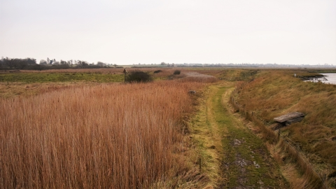 Howlands Marsh in winter