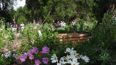 Essex Wildlife Trust Community Sensory Garden at Langdon Nature Reserve