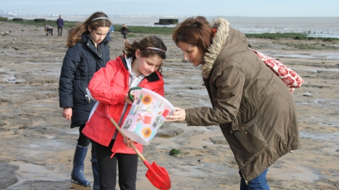 The Naze fossil hunting