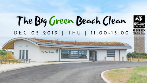 The Big Green Beach Clean December