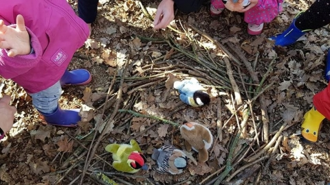 Bedfords Forest Schools
