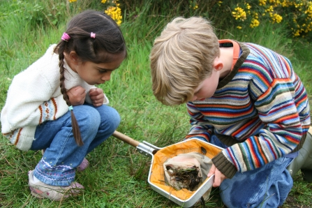 EYFS Pond dipping