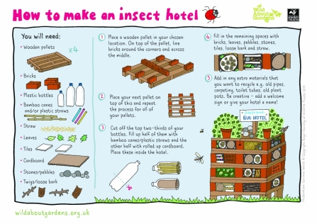 How to make a insect hotel
