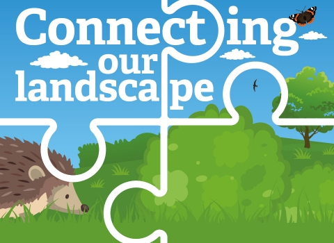 Connecting our landscape