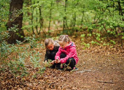 Autumn children - Helena Dolby for Sheffield & Rotherham Wildlife Trust